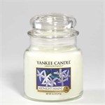 Midnight jasmine giara media YANKEE CANDLE